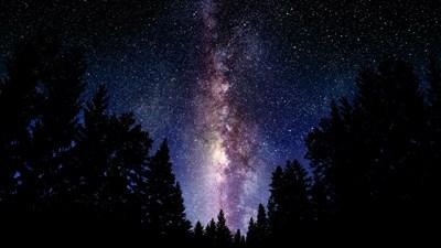 El Universo de Voynich